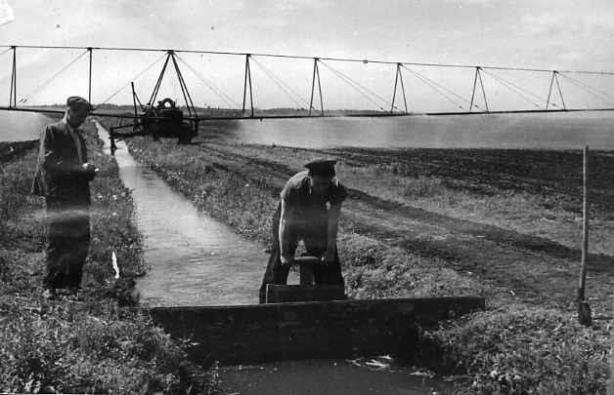 1950 Искусственное орошение полей с помощью дождевального агрегата.